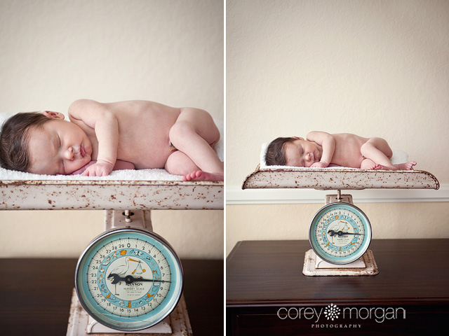 Antique Newborn Scale - Newborn Photographer